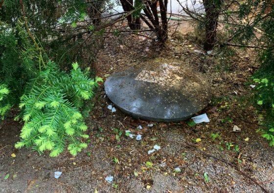 Erdgastank unterirdisch im Garten unter Baum versteckt